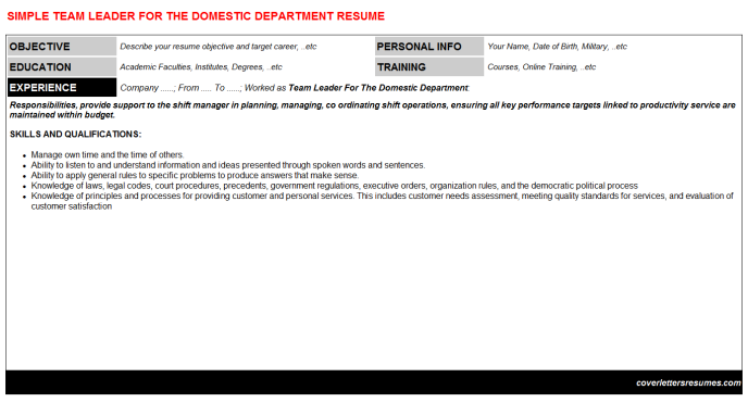 Team Leader For The Domestic Department Resume Template (#37901)