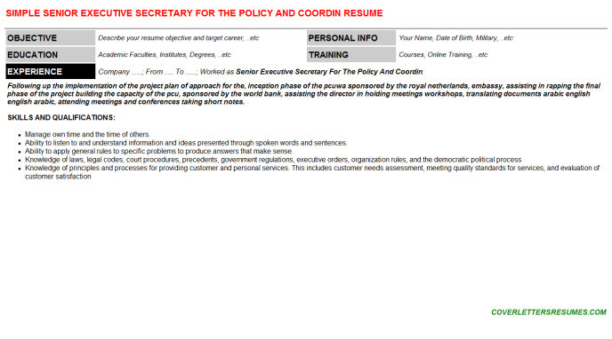 Senior Executive Secretary For The Policy And Coordin Resume Template (#95415)