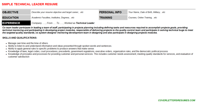 Technical Leader Resume Template