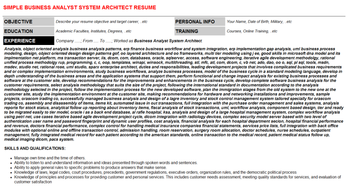 Business Analyst System Architect CV Resume