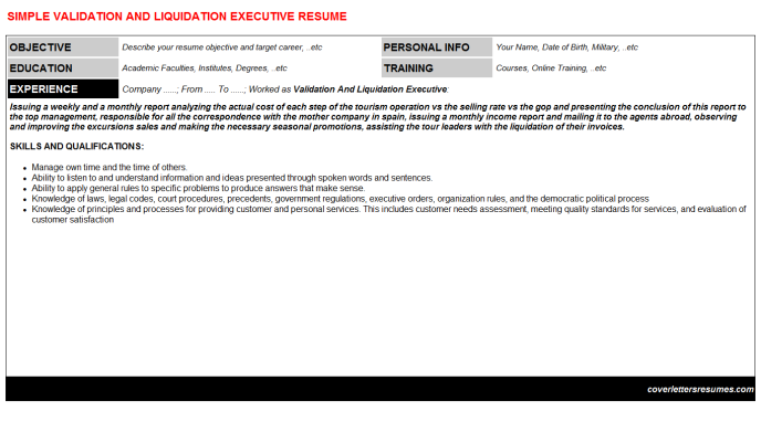 Validation And Liquidation Executive Resume Template
