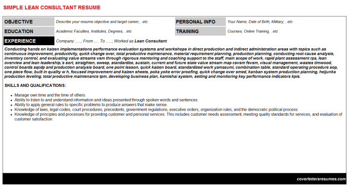 Lean Consultant Resume Template