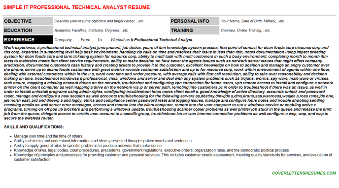 It Professional Technical Analyst Resume Template