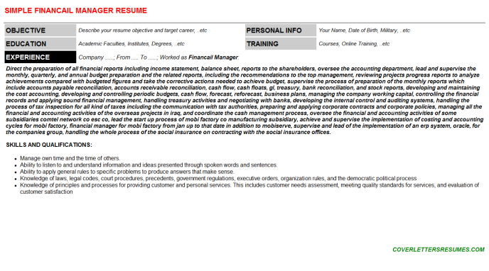 Financail Manager Resume Template