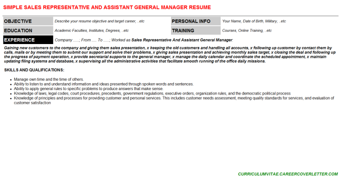 Sales Representative And Assistant General Manager Resume Template (#145469)