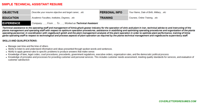 Technical Assistant Resume Template