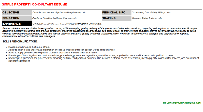 Property Consultant Resume Template