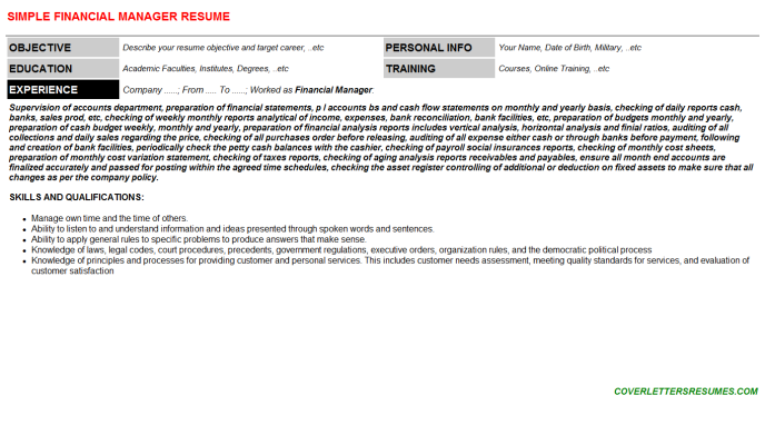 Financial Manager Resume Template (#555)