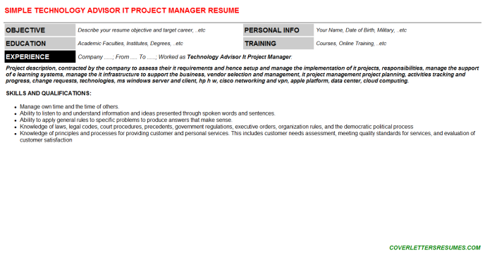 Technology Advisor It Project Manager Resume Template (#147555)