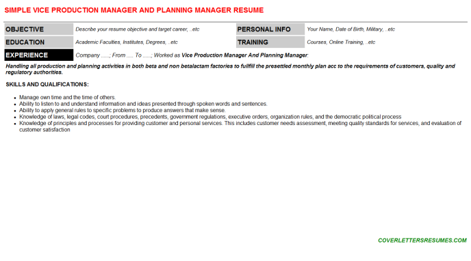 Vice Production Manager And Planning Manager Resume Template