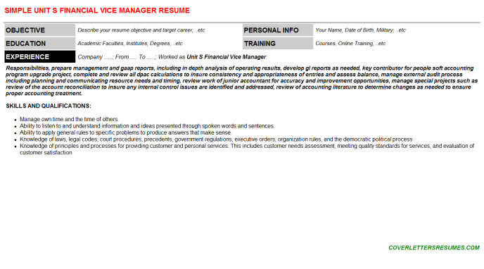 Unit S Financial Vice Manager Resume Template (#76560)