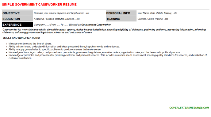 Government Caseworker Resume Template